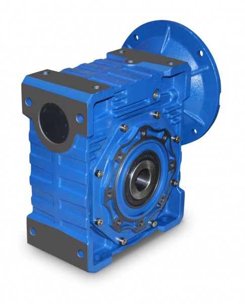 Worm Gear in gray cast iron Design