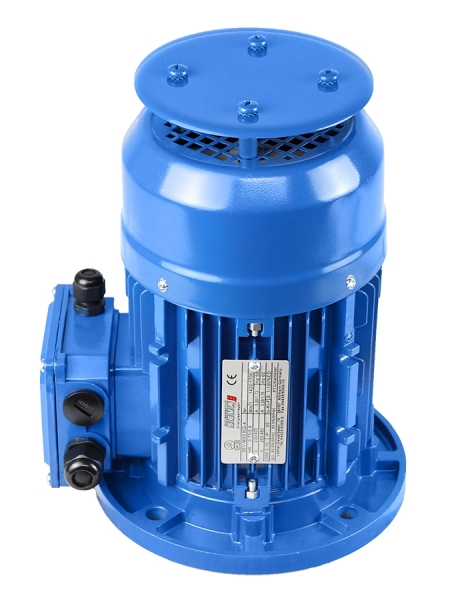 Electric Motor with rain cover
