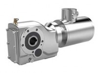 Stainless steel bevel gear motor with Terminalbox
