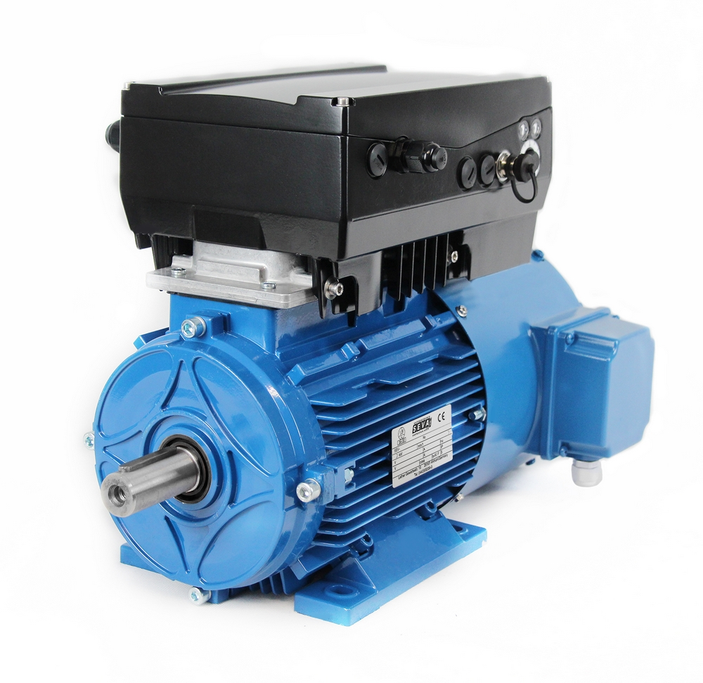 Electric Motor - Frequency Inverter - Forced Cooling Fan