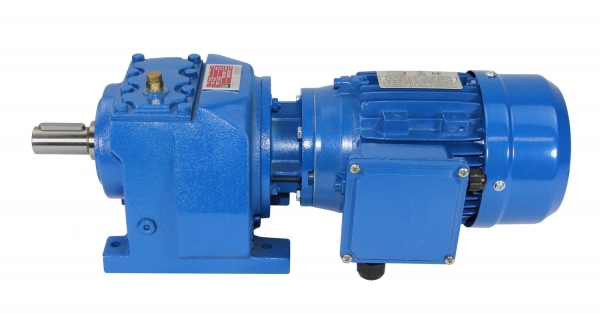 Geared Motor with Terminal Box on the right