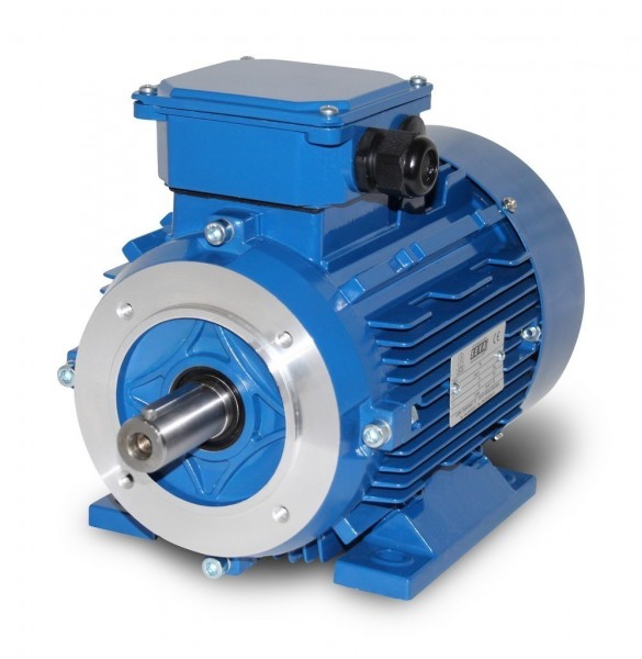Reduced Size Electric Motor C-100-B34